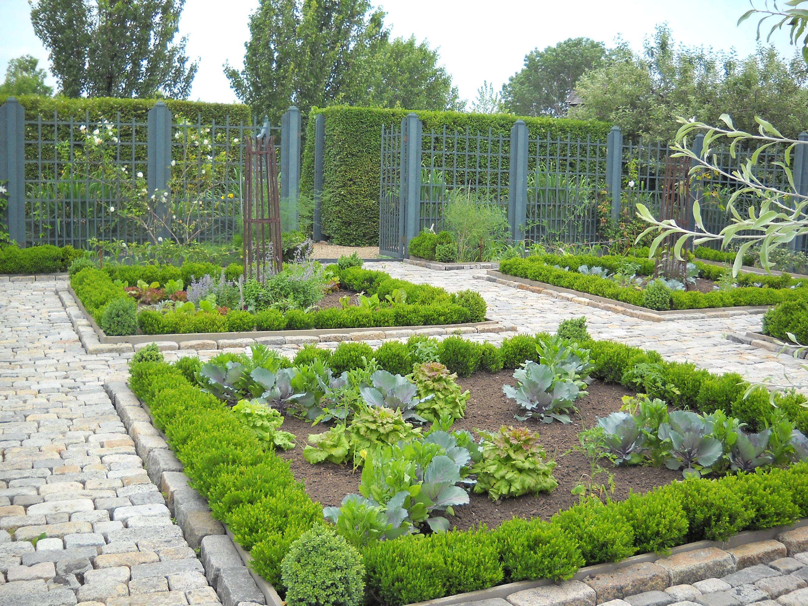 Image of: a herb garden design