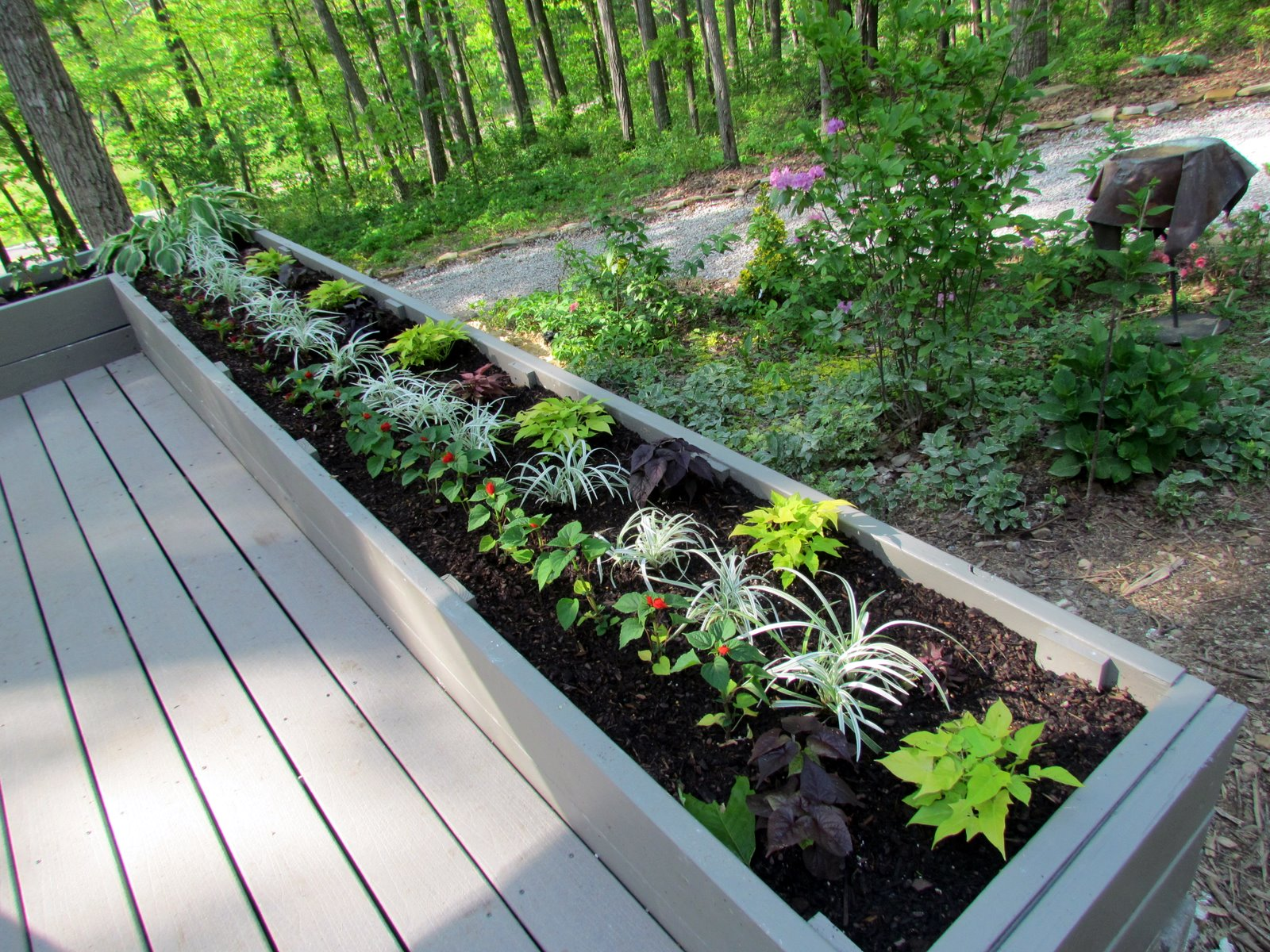 Image of: flower bed design around deck