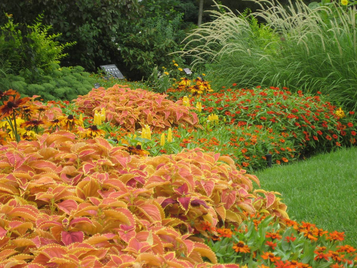 flower bed design basics