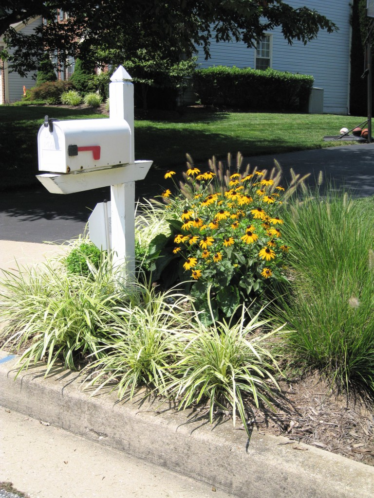 Image of: flower bed designs around mailboxes