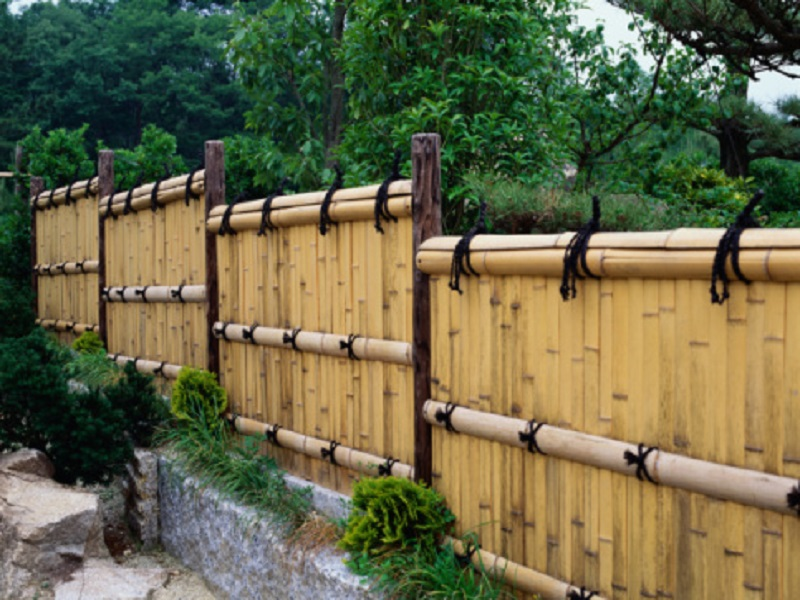 Image of: bamboo privacy fence designs