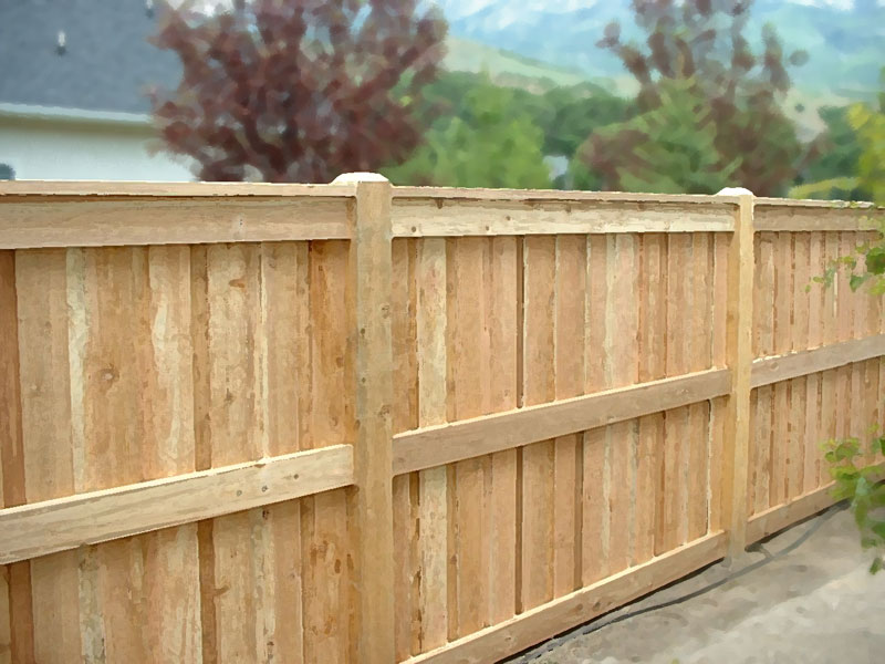 Image of: cedar privacy fence designs
