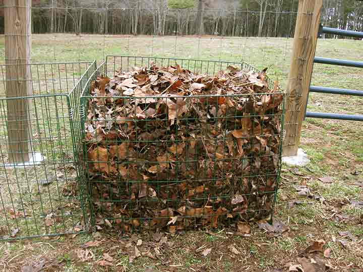 Image of: kitchen compost bin mold