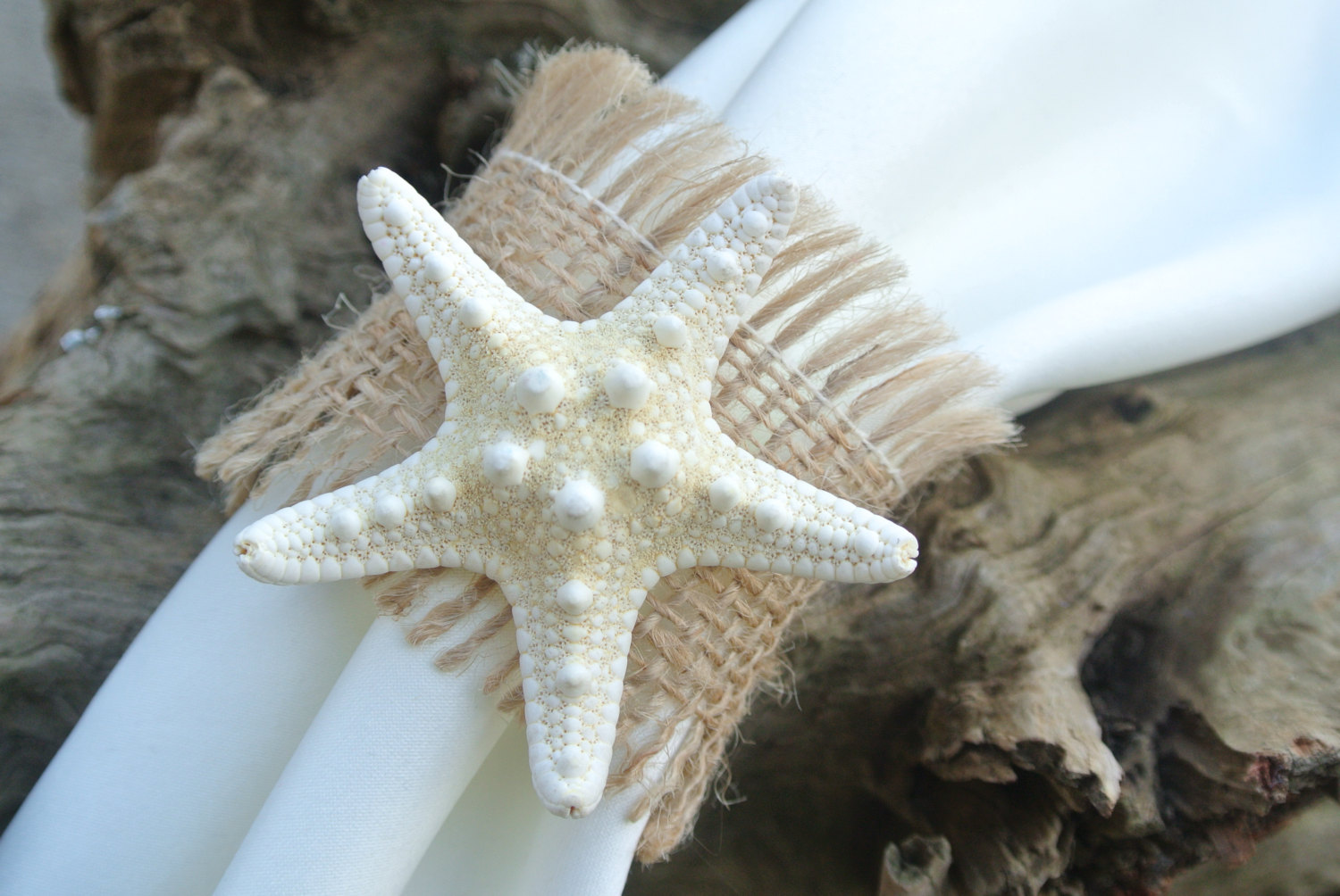 Image of: decorating with starfish