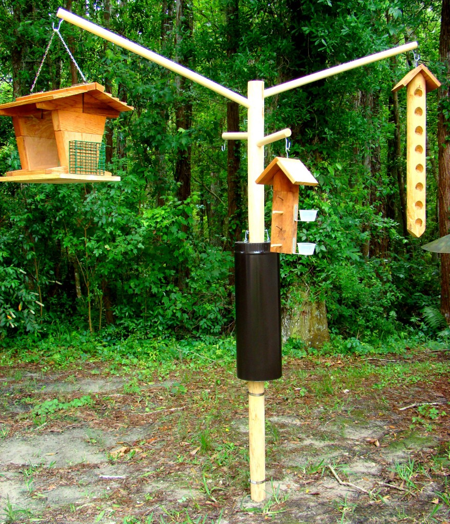 Image of: decorative wooden bird houses