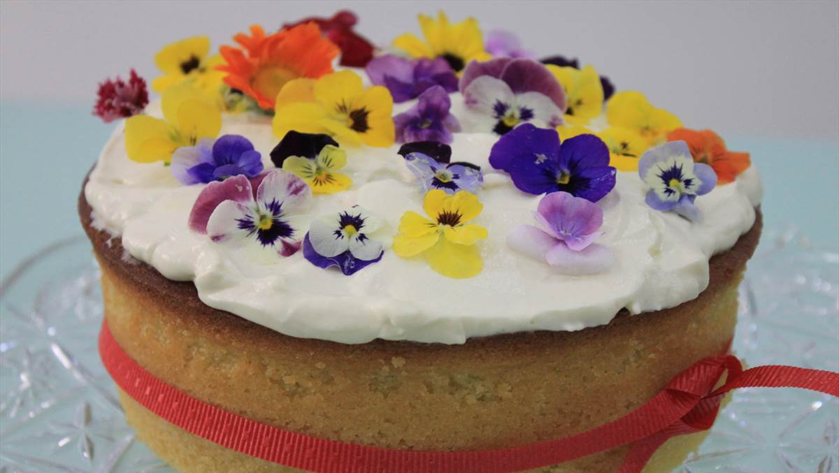 Image of: edible flowers for cake decorating