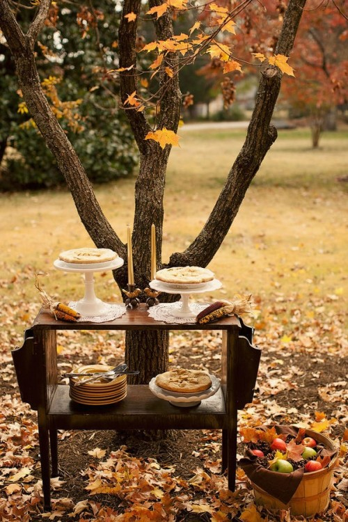Image of: outdoor wedding decoration ideas for fall