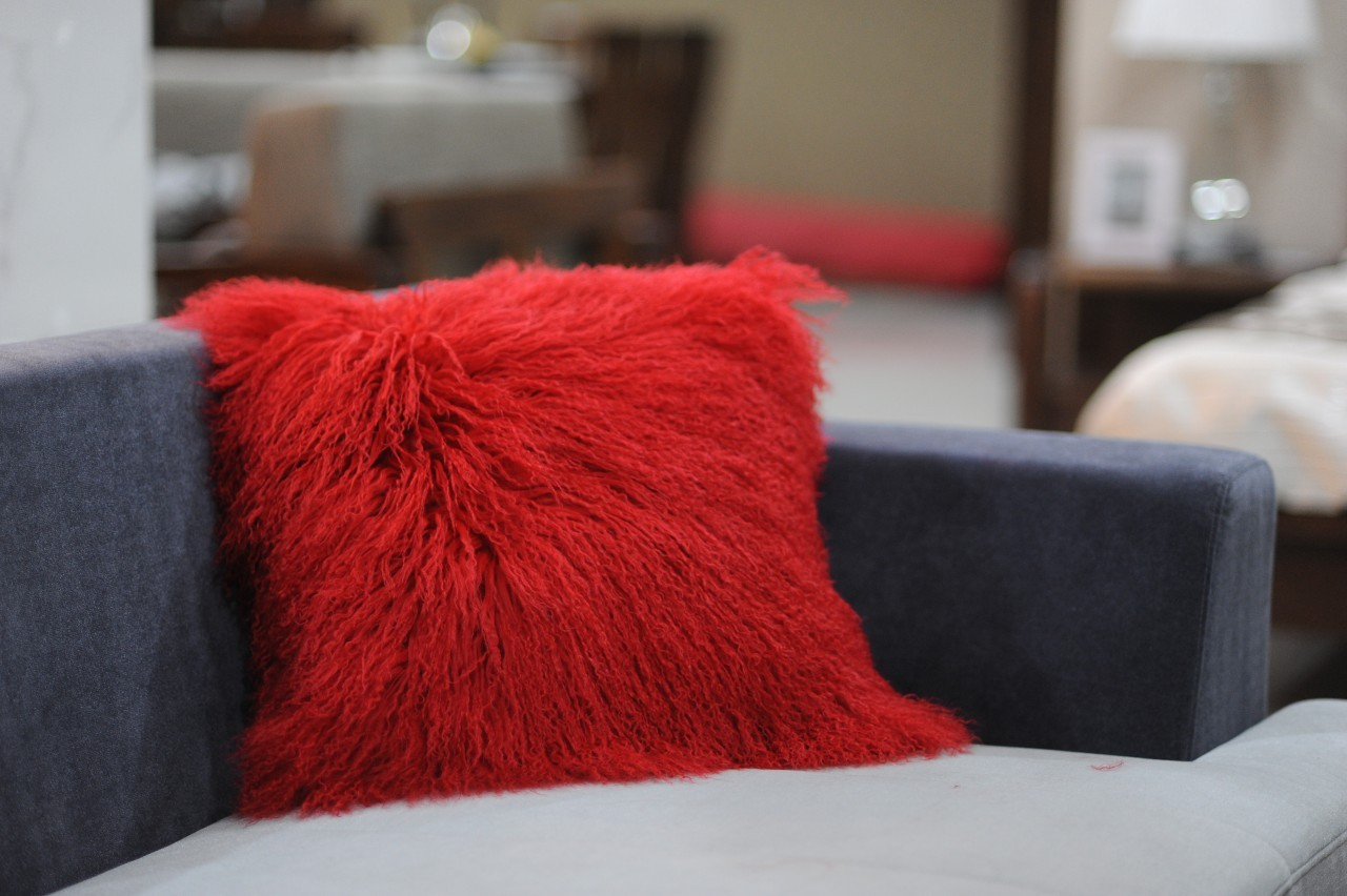 Image of: red decorative pillows for couch