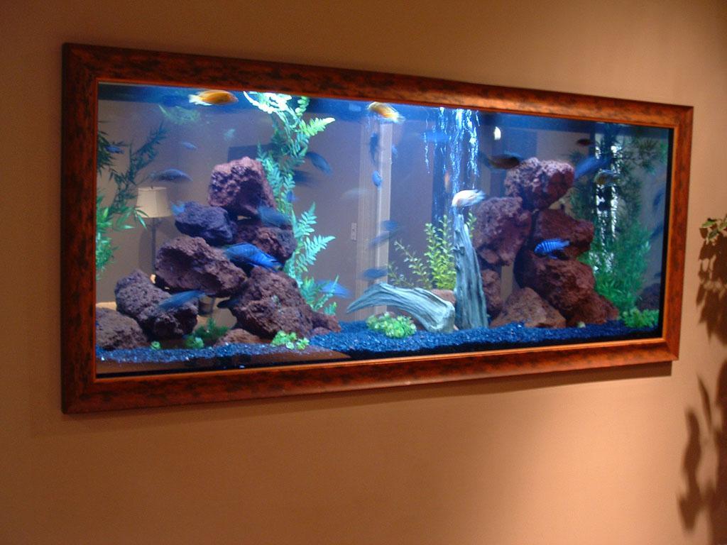 Image of: Aquarium Design Style