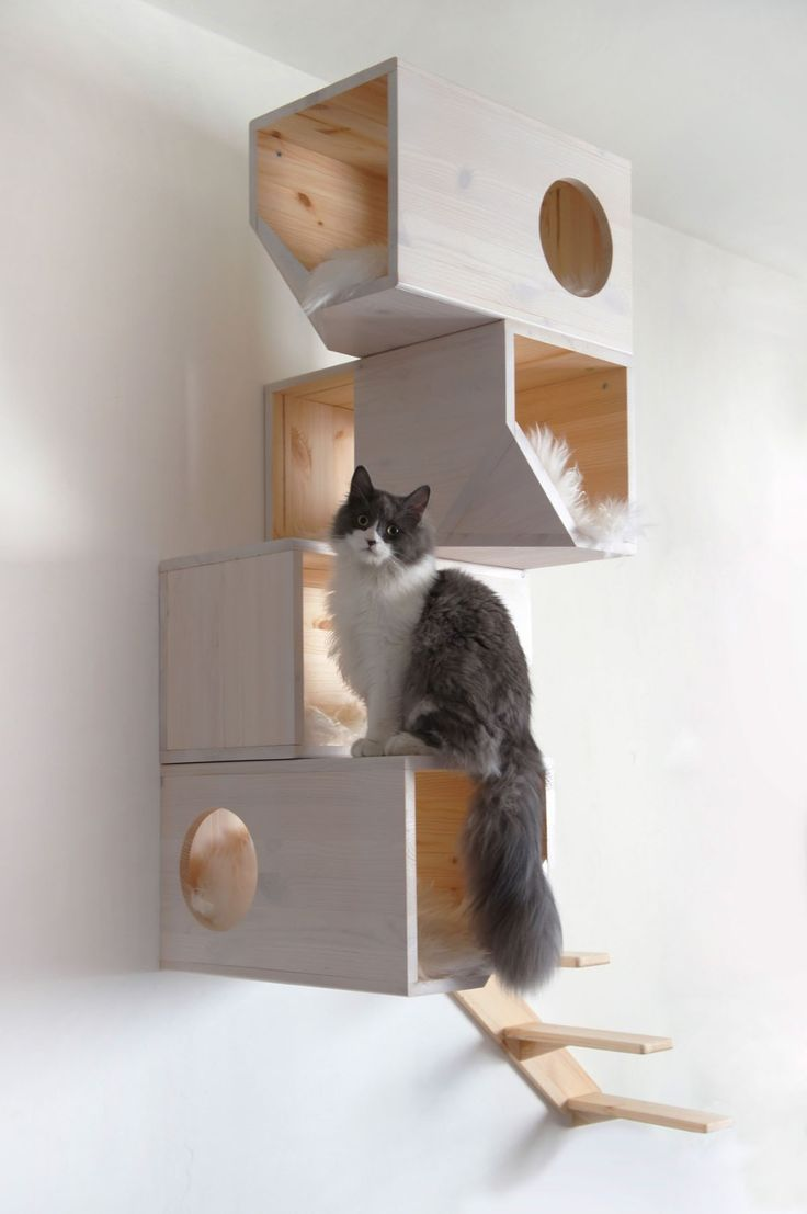 Image of: easy cat tree designs