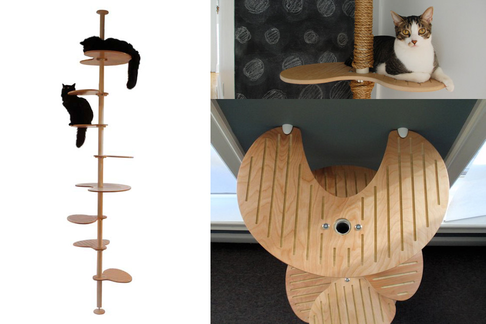 Image of: floor ceiling cat tree designs