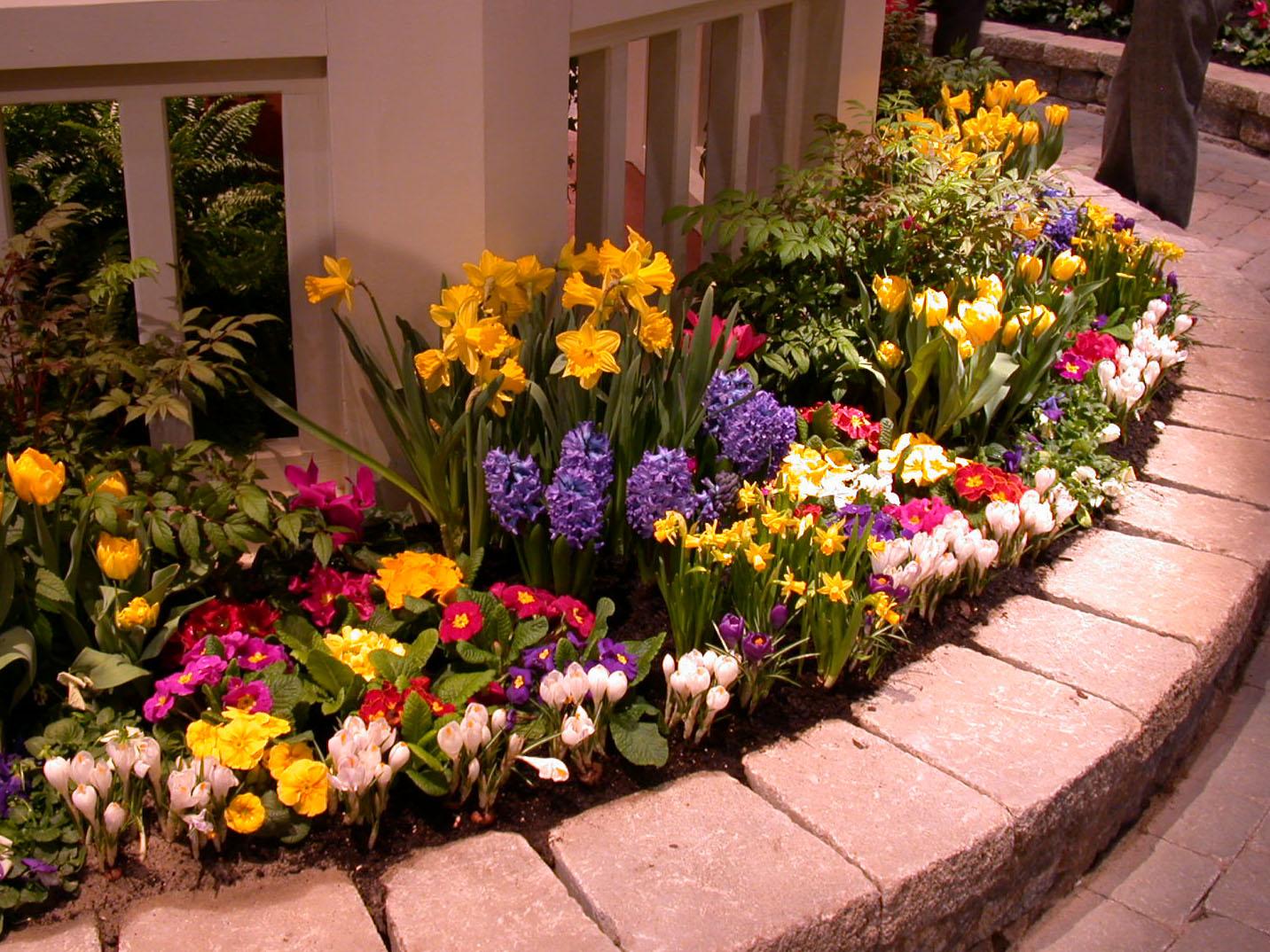 Image of: flower garden ideas around house