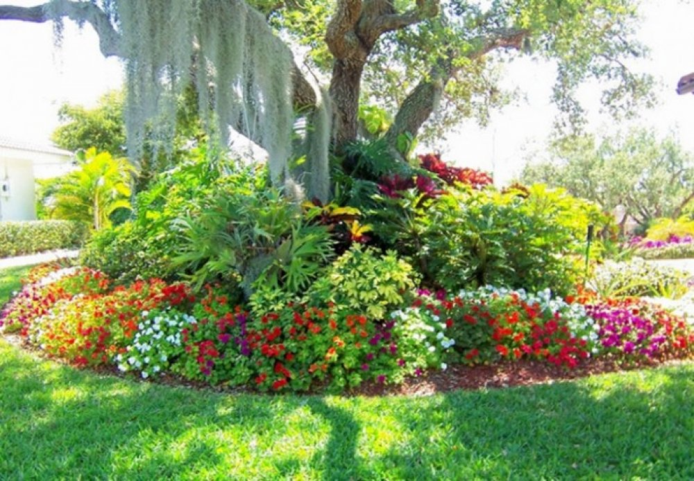 Image of: flower garden ideas around trees
