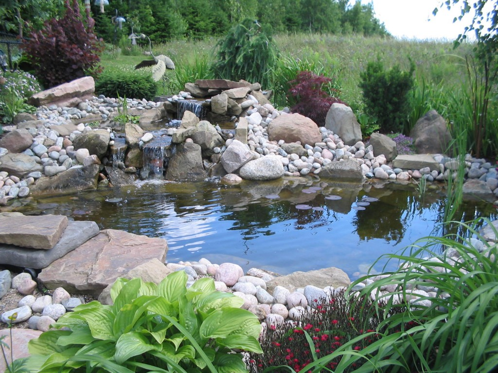 Image of: koi fish ponds designs