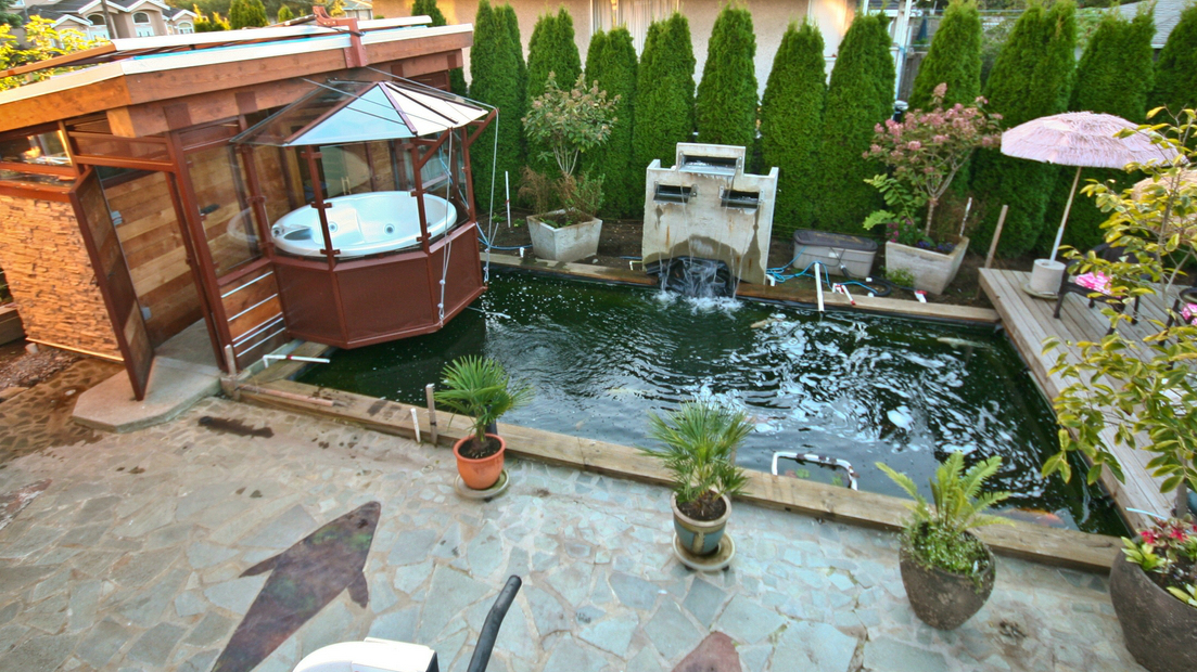Image of: koi pond design and construction