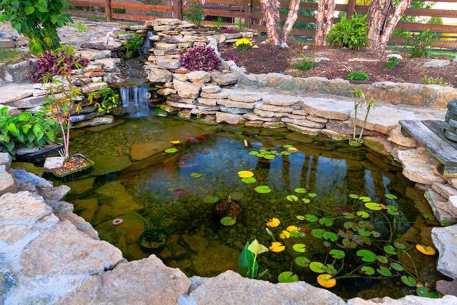 Image of: koi pond design pictures